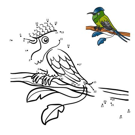 Dibujo Para Colorear Para Niños, Colibrí Cola Hummingbird ...