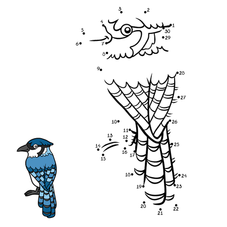 passerine: Numbers game, education dot to dot game for children, Blue jay