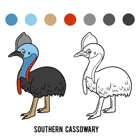 Coloring book for children, Southern cassowary