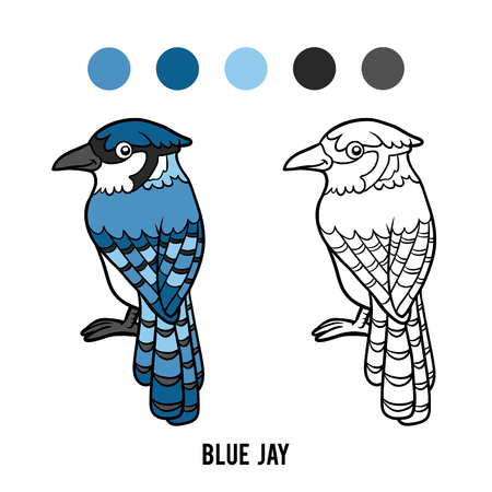 Coloring book for children, Blue jay
