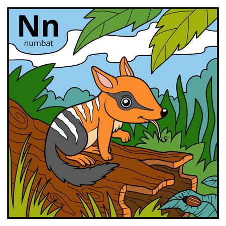 termite: Color alphabet for children, letter N (numbat) Illustration
