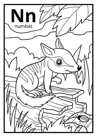 Libro da colorare per bambini, alfabeto incolore. Lettera N, numbat