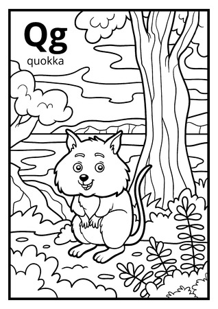 Coloring book for children, colorless alphabet. Letter Q, quokka