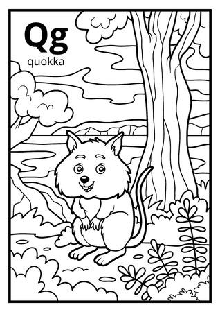 Coloring book for children, colorless alphabet. Letter Q, quokka
