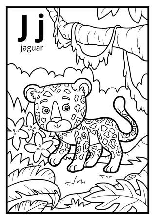 Coloring book for children, colorless alphabet. Letter J, jaguar