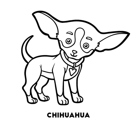 Coloring book for children, Dog breeds: Chihuahua