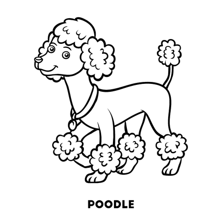 Coloring Book For Children Dog Breeds Poodle Stock Vector