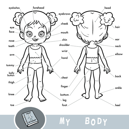 Cartoon visual dictionary for children about the human body. My body parts for a girl.