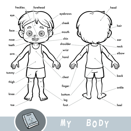 Cartoon visual dictionary for children about the human body. My body parts for a boy.