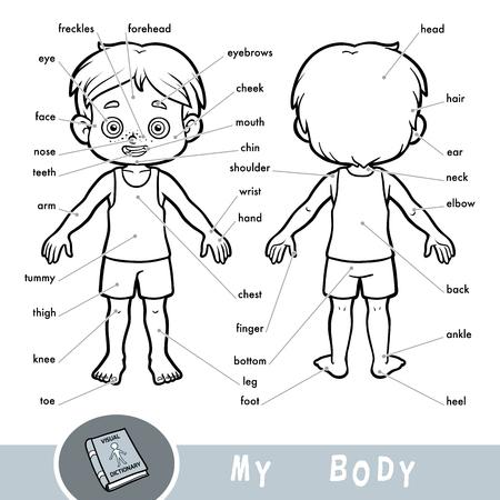 Dicionário visual de desenhos animados para crianças sobre o corpo humano. Minhas partes do corpo para um menino. Ilustración de vector