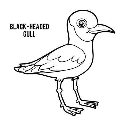 Coloring book for children, Black-headed gull Illustration