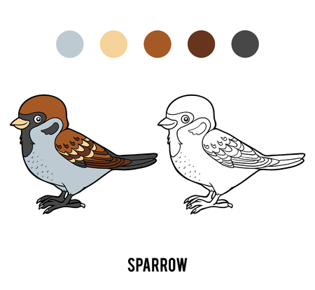 Coloring book for children, sparrow vector illustration.