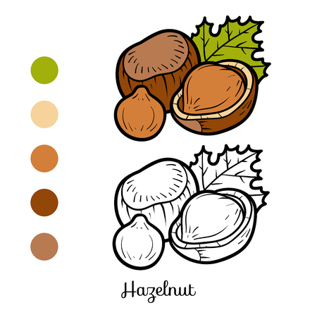 Coloring book for children, hazelnut vector illustration.