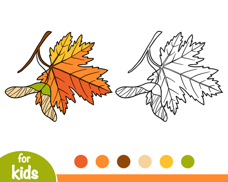 Coloring book for children, Maple leaf