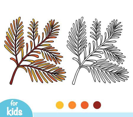 Coloring book for children, Sequoia branch Illustration