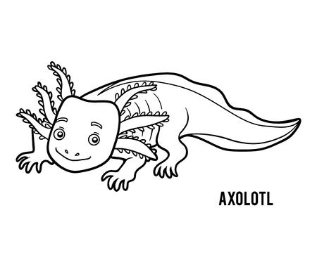 Coloring book for children, Axolotl