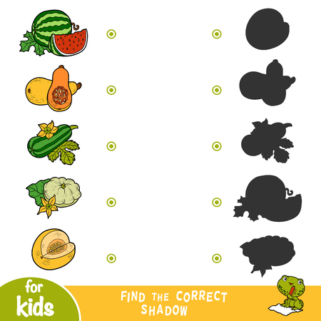 Find the correct shadow, education game for children. Cartroon set of vegetables - Pattypan squash, Watermelon, Marrow squash, Squash, Honeydew melon