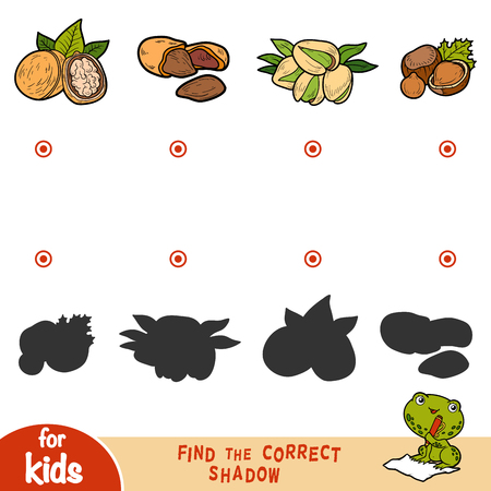 Find the correct shadow, education game for children. Cartroon set of nuts