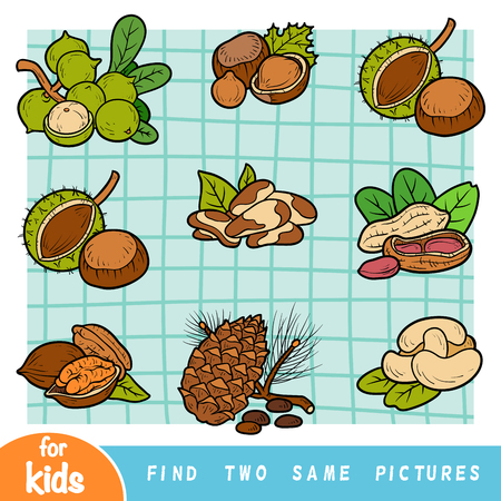 Find two the same pictures, education game for children. Colorful set of nuts 矢量图像