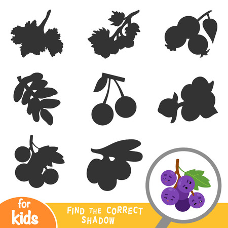Find the correct shadow, education game for children, Grapes