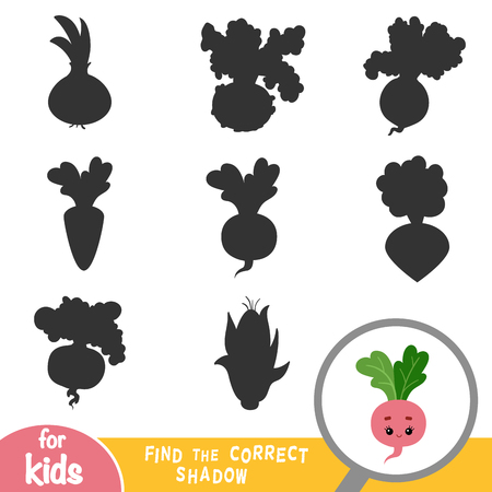 Find the correct shadow, education game for children, Radish