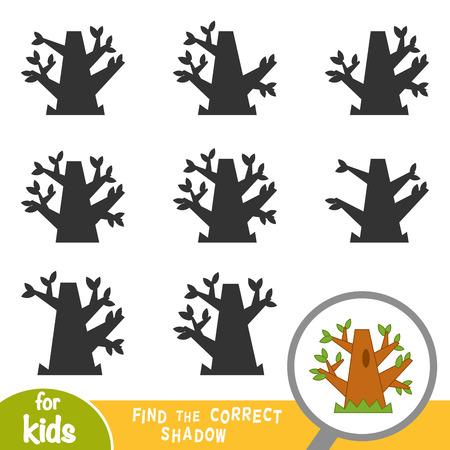 Find the correct shadow, education game for children, Oak tree