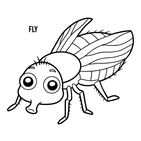 Coloring book for children, Fly