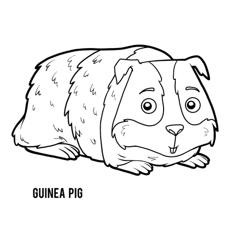 Coloring book for children, Guinea pig