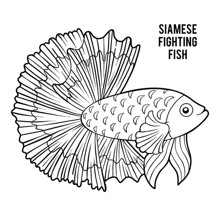 Coloring book for children, Siamese fighting fish