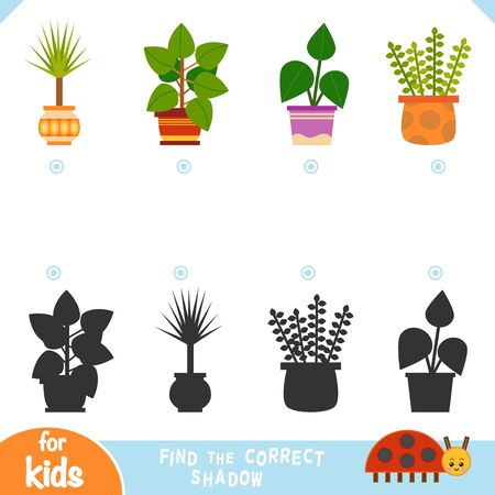 Find the correct shadow, education game for children, set of houseplants