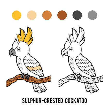 Coloring book for children, Sulphur-crested cockatoo