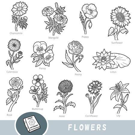 Set di fiori in bianco e nero, raccolta di elementi della natura vettoriale con nomi in inglese. Dizionario visivo dei cartoni animati per bambini sulle piante