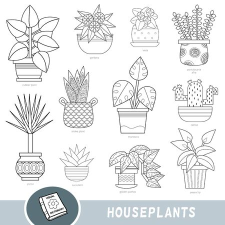 Black and white set of houseplants, collection of vector nature items with names in English. Cartoon visual dictionary for children about flowers Ilustracja
