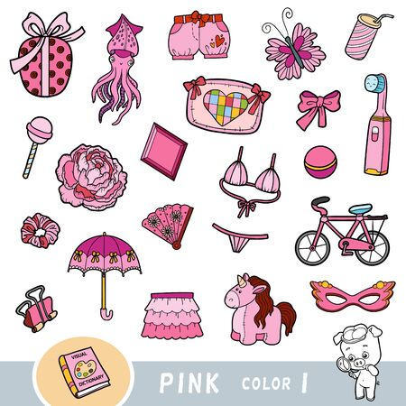 Colorful set of pink color objects. Visual dictionary for children about the basic colors. Cartoon images to learning in kindergarten and preschool