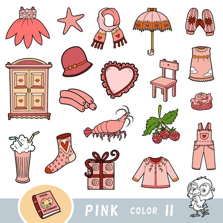Colorful set of pink color objects. Visual dictionary for children about the basic colors. Cartoon images to learning in kindergarten and preschool Ilustração Vetorial