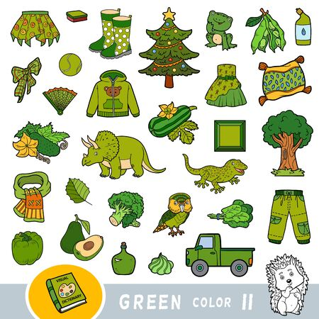Colorful set of green color objects. Visual dictionary for children about the basic colors. Cartoon images to learning in kindergarten and preschool Ilustracja