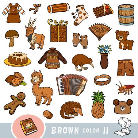 Colorful set of brown color objects. Visual dictionary for children about the basic colors. Cartoon images to learning in kindergarten and preschool Vector Illustration