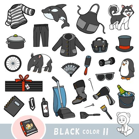 Colorful set of black color objects. Visual dictionary for children about the basic colors. Cartoon images to learning in kindergarten and preschool Illustration