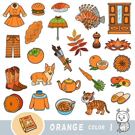 Colorful set of orange color objects. Visual dictionary for children about the basic colors. Cartoon images to learning in kindergarten and preschool