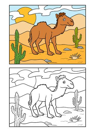 Coloring book for children, One-humped camel on a desert background