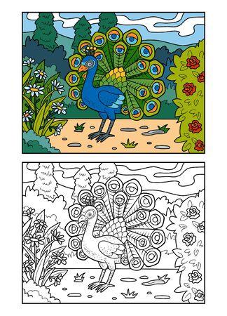 Libro de colorear para niños, pavo real en el parque real