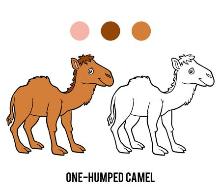 Coloring book for children, One-humped camel