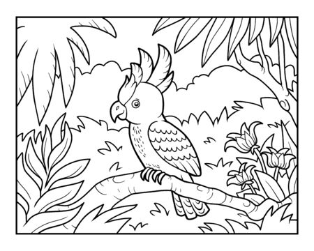 Coloring book for children, Cockatoo parrot in the rainforest