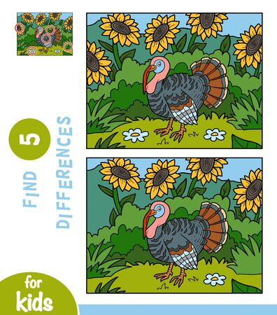 Find differences, educational game for children, Turkey in the meadow with sunflowers