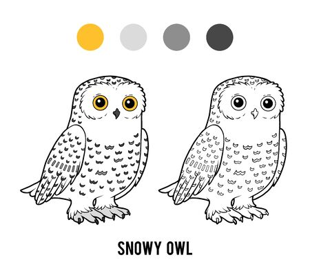 Coloring book for children, Snowy owl