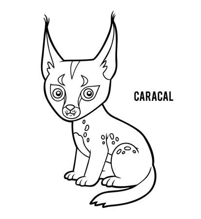 Coloring book for children, Caracal