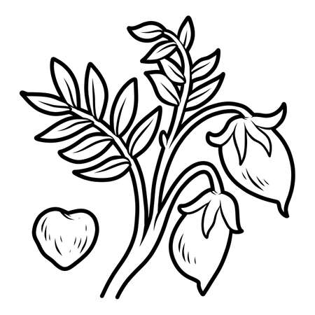 Coloring book for children, Chickpea