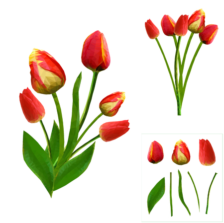 set of vibrant polygonal tulips on white background. isolated. easy to modify. vector illustration.