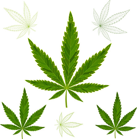 colorful mosaic cannabis leaves. isolated. easy to modify. vector illustration.
