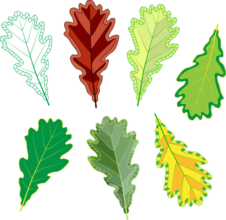 Colorful mosaic oak leaves. isolated. easy to modify. vector illustration.